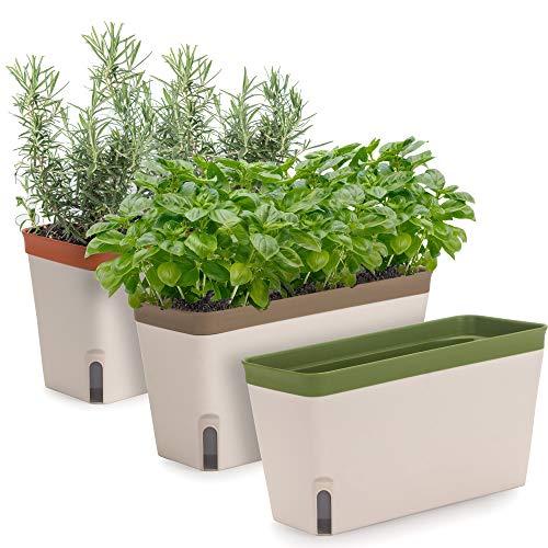 Windowsill Herb Planter Box, Set of 3, Rectangular Self Watering Indoor Garden for Kitchens, Grow Plants, Flowers or Succulents, Large Water Reservoir
