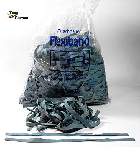 Todocultivo Gomas de injertar Flexiband. 1 Kilo. 240x8 mm. Especialmente estudiadas para Todo Tipo de injertos.