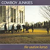 cowboy junkies mariner song quotes