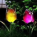2-Pack LIFFY Waterproof Outdoor Decorative Solar Tulip LED Lights