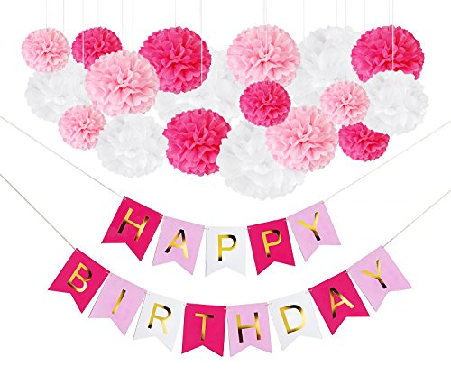 DIY Pink Birthday Party Decorations - Happy Birthday Banner Sign and DIY Tissue Paper Pom-Pom Decor Kit for Girls - Princess Flower Kitty Pig LOL Paris Unicorn Tea Party Theme Supplies