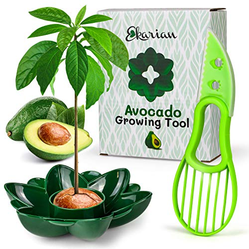 Ekarian Avocado Growing Tool   Geschenke für Frauen   Avocado Pflanzen   Geburtstagsgeschenk   Avocado züchten   Avocado Schneider   Avocadobaum Pflanzen   Ebook