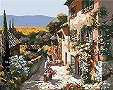 Kit de pintura por números para adultos, niños, principiantes, kits de pintura al óleo, regalos de cumpleaños, decoración de pared  16 x 20 pulgadas  smt5169