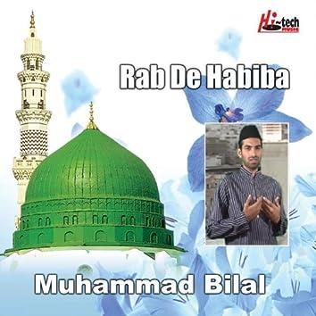 Rab De Habiba - Islamic Naats