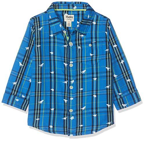 Hatley Baby-jongensshirt met button-down-kraag