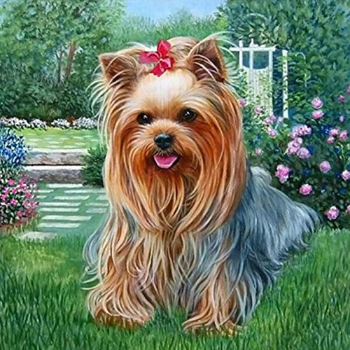 DIY 5D Diamond Painting kit,5D Kit de Pintura de Diamante Completo Perro animal de jardín Bordado Punto de Cruz Artesanía Artesanal para Pared Decoración del Hogar 30x40 cm