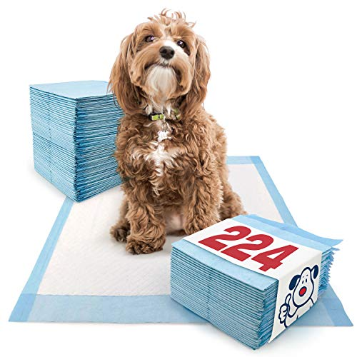 ValuePad Puppy Pads, Medium 23x24 Inch, 224 Count - Training Pads for Dogs, Leak Proof 5-Layer Design, Perfect for Puppies, Smaller Dogs
