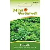 Petersilie Samen (Mooskrause 2)   Petersiliesamen   Saatgut für Petersilie-Pflanzen   Petersiliensamen