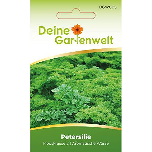 Petersilie Samen (Mooskrause 2) | Petersiliesamen | Saatgut für Petersilie-Pflanzen...