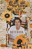 Harry Styles : Notebook and Journal Perfect for Birthday gifts and Fan club members: perfectly Lined journal with 110 pages , 6x9 inches
