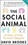 The Social Animal: A Story of How Success Happens by David Brooks (5-Jan-2012) Paperback