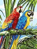 5D Uccello Punto Croce Animale Diamante Ricamo Pappagallo Strass Mosaico Decorazione Della Casa Pittura Diamante A9 50x70cm