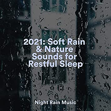 2021: Soft Rain & Nature Sounds for Restful Sleep