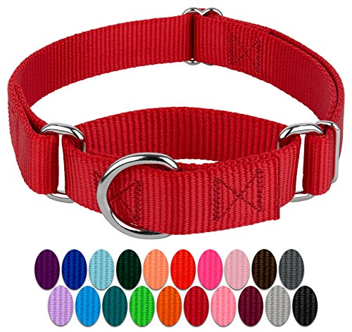 Country Brook Design - Martingale Heavyduty Nylon Dog Collar - Red - Medium