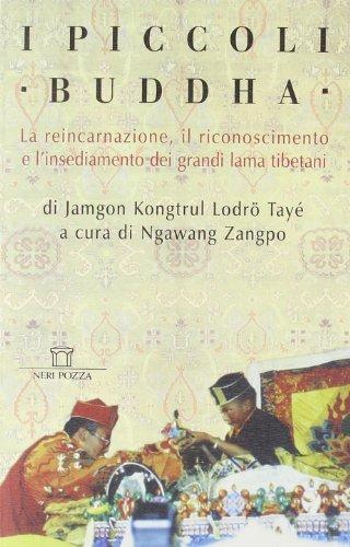 I piccoli Buddha. Il riconoscimento dei maestri reincarnati del Tibet e dell'Himalaya