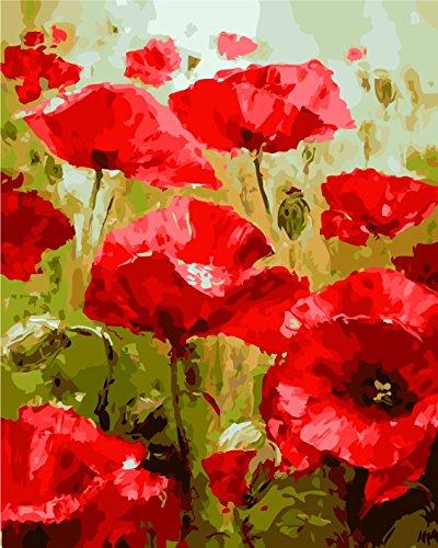 YEESAM ART DIY Ölgemälde Malen nach Zahlen Erwachsene Kinder, Rot Mohnblumen Blume Zahlenmalerei ab 5 Öl Wandkunst (Rot, Ohne Rahmen)