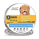 GrayGhost Pet Safe Aceites Esenciales Naturales Collar para Perros Gatos Control de plagas Tratamiento de pulgas Prevención