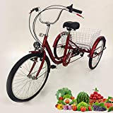 Adult Tricycles - Best Reviews Guide