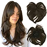 iLUU 40g Thick Synthetic Hair Toppers 2/30 Black and Brown Highlights Color Silk Base Top Hairpiece Clip in Hair Topper Hair Bang for Women Straight Thin Hair