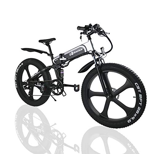 W Wallke Folding Electric Bike