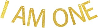 I AM ONE Banner, Baby Boys/Girls First/1st Birthday Party Signs Decorations Gold Gliter Paper Garland