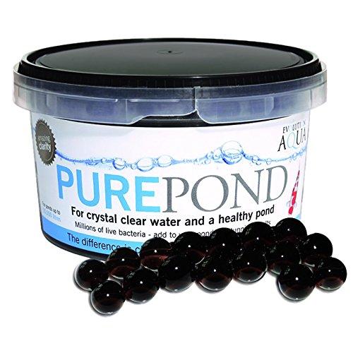 SunSun Evolution Aqua Pure Pond 500 ml für Teiche bis 10000 L Filterbakterien Biostarter für den Teich