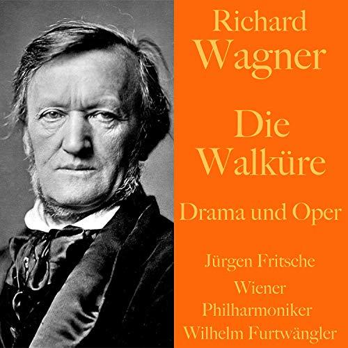 Die Walküre - Drama und Oper Titelbild
