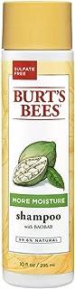 Burt's Bees More Moisture Baobab Shampoo, Sulfate-Free Shampoo - 10 Ounce Bottle