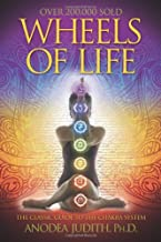 Best the wheel of life book Reviews