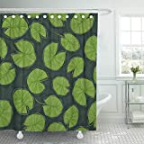 PAUSEBOLL Green Water Pond with Lily Pads on The Top View Leaf Cartoon Dark Depth Drawing Lake Shower Curtain Bathroom with Hooks,Waterproof Polyester Curtain