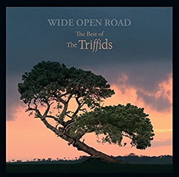Wide Open Road - The Best of the Triffids