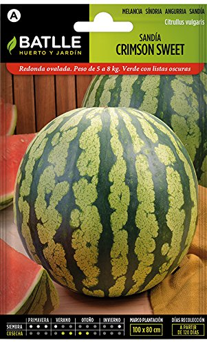 Batlle Gemüsesamen - Wassermelone Crimson sweet (160 Samen)