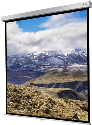celexon manuell ausziehbare Heimkino- und Business-Rollo-Beamer-Leinwand 4K und Full-HD mit Slow-Return Professional Plus - 160 x 160 cm - 1:1