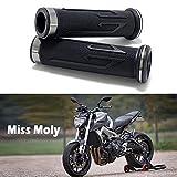 7/8' Puño de Motocicleta Manillar, Moto Manillar Aluminio para CBR Shadow Ninja GSXR YZF (Titanio)