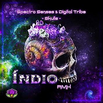 Spectro Senses & Digital Tribe - Skulls (Indio Rmx)