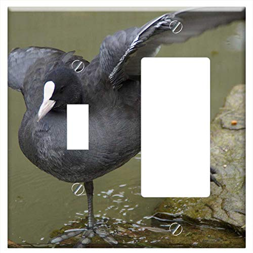 Toggle Rocker/GFCI Combination Wall Plate Cover - Coot Duck Water Bird Bird Single Leg Stance