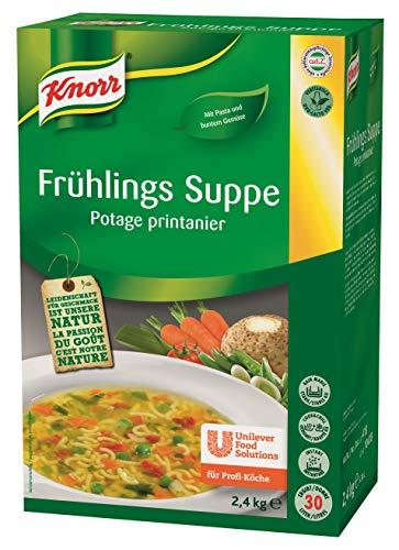 Knorr Frühlings Suppe mit Nudeln und buntem Gemüse (natürlicher, ausgewogener Geschmack) 1er Pack (1 x 2,4kg)