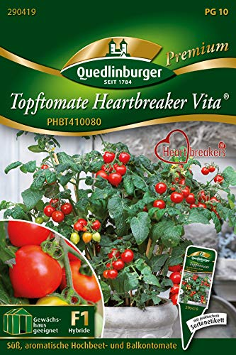 Quedlinburger 290419 Tomate Heartbreaker Vita (Tomatensamen)