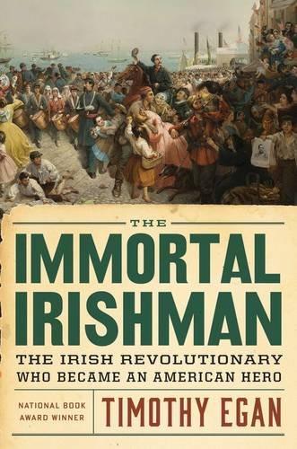 Image of The Immortal Irishman: The Irish Revolutionary Who Became an American Hero