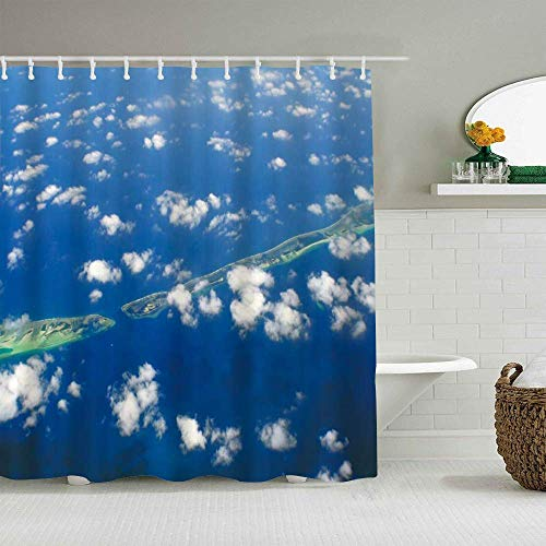 Duschvorhang Schlange Tier Kunst Design Romantik Abstrakte Malerei Zwei Schlangen treffen auf Blick Himmel Wolken Wolke Blüte wasserdichte Bad Liner Haken enthalten - Badezimmer dekorative Ideen