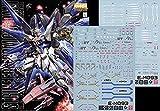 蛍光 HG RG MG PG RE HiRM ガンダム ガンプラ ディテールアップ用水転写式デカール (MG 1/100 ZGMF-X20A ストライクフリーダムガンダム用)