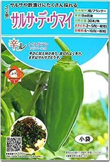 辛 とうがらし 種子 サルサ・デ・ウマイ 20粒 トウガラシ (ハラペーニョタイプ)