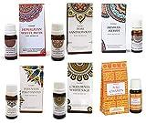 Set di 6 oli aromatici, salvia bianca, legno di sandalo, legno di sandalo, Mirra, Nag Champa, muschio bianco, con astuccio e dosatore