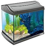 Tetra AquaArt Discovery Line - Set completo de acuario con luz LED, 20 litros, color antracita (incluye luz diurna y nocturna, filtro interior y bomba para acuarios, ideal para gambas)