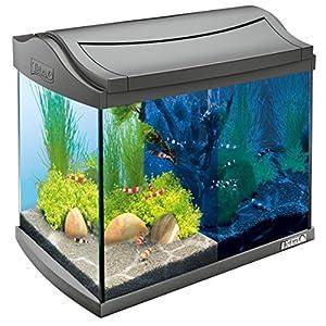Tetra-AquaArt-Discovery-Line-LED-Aquarium-Komplett-Set-inklusive-LED-Beleuchtung-Tag-und-Nachtlichtschaltung-Innenfilter-und-Futter-versch-Farben-und-Gren
