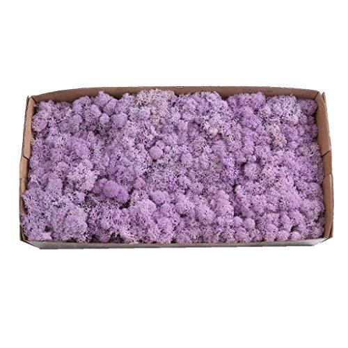 Homyl Séché Renne Mousse Pot de Fleur Panier Doublure - Violet