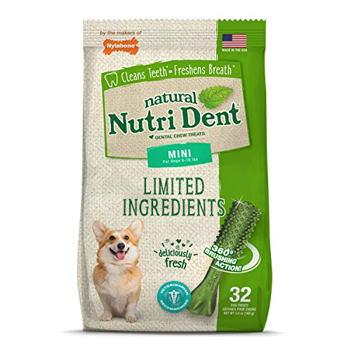 Nylabone Nutri Dent Natural Dental Fresh Breath Flavored Chew Treats 32 Count Mini - Up to 10 lbs.