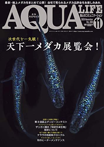 月刊アクアライフ 2020年 11 月号 天下一メダカ展覧会!