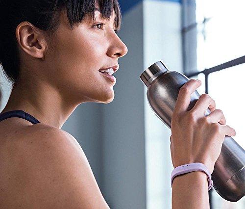 Fitbit Flex 2 Fitness Wristband (Lavender)