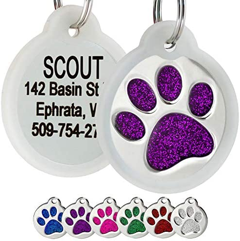 GoTags Paw Print Round Stainless Steel Pet Tag for Dogs and Cats Personalized with 4 Lines of product image